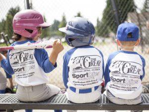 PenMet Parks Baseball