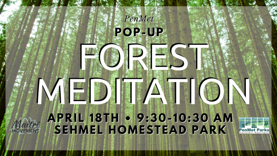 PenMet Pop-up: Forest Meditation